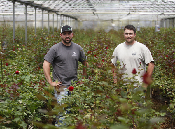Chris, left, and Nick Neve stand in a greenhouse at Neve Bros. in Petaluma. (BETH SCHLANKER/ The Press Democrat)