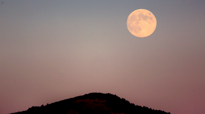 The Harvest Moon rises on Sept. 18, 2013. (Kent Porter / The Press Democrat)